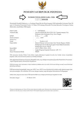 Contoh API-P NIB CV