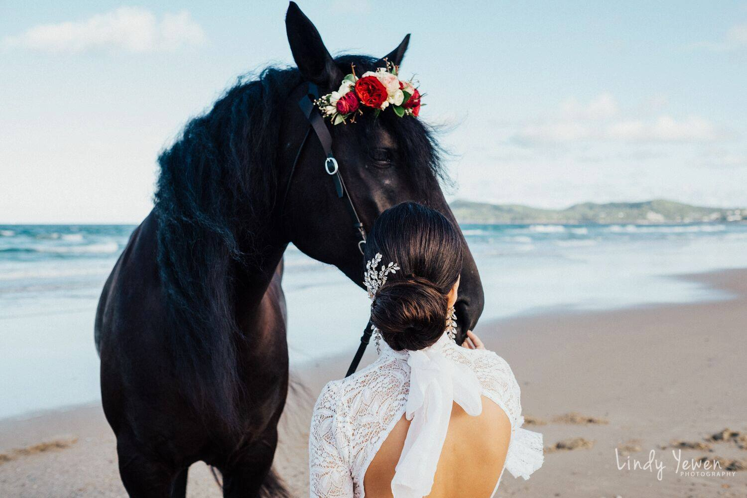 WEDDING HORSE HIRE AUSTRALIA