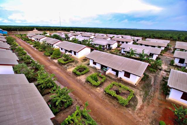 Keuntungan Berkarir di Perkebunan Kelapa Sawit - www.radenpedia.com