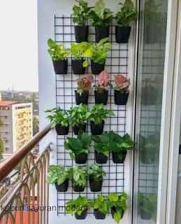 Kebun sayur modern