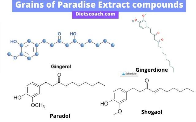 grains of paradise compounds