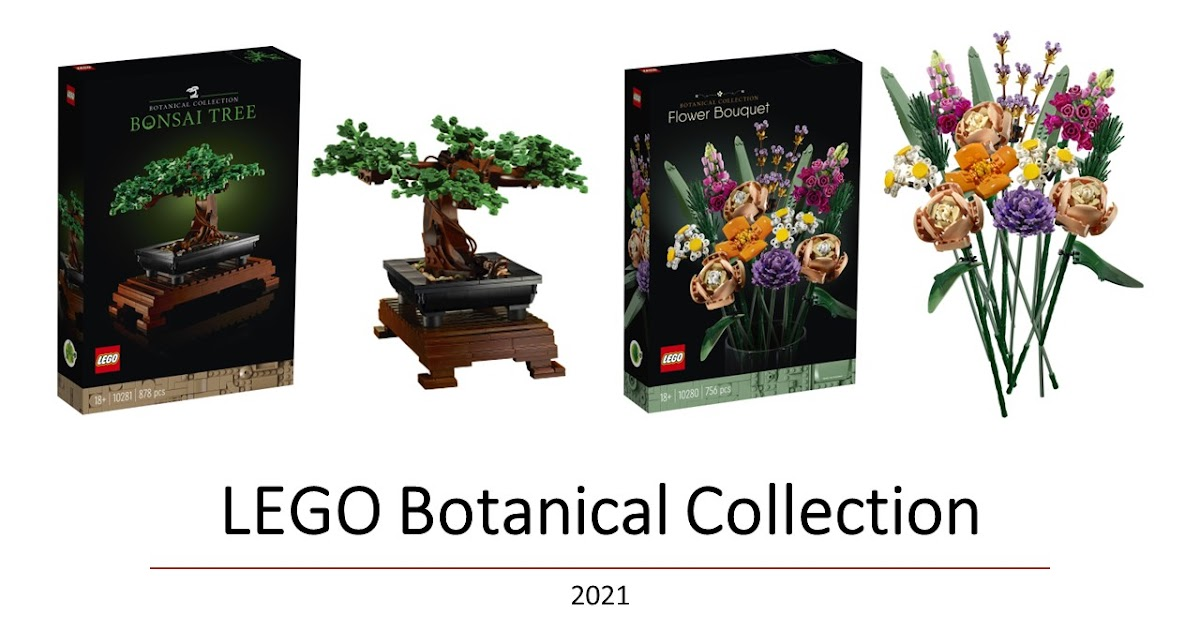Lego Botancial Collection Bonsai Tree And Flower Bouquet Review The Wacky Duo Singapore Family Lifestyle Travel Website