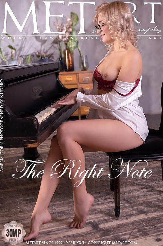 2834785857 [Met-Art] Amelia Dorn - The Right Note