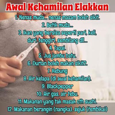 makanan perlu dielak ketika hamil, makanan bahaya untuk wanita hamil
