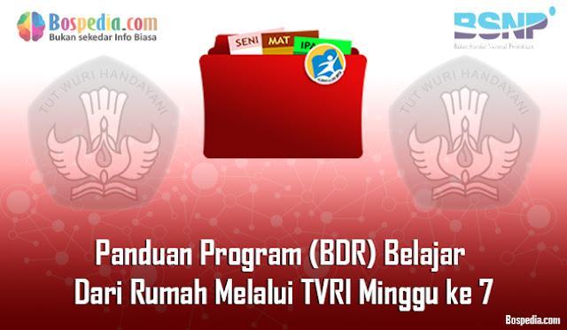Panduan Program (BDR) Belajar Dari Rumah Melalui TVRI Minggu ke 7