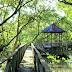 Hutan Mangrove Marga Sari Balikpapan