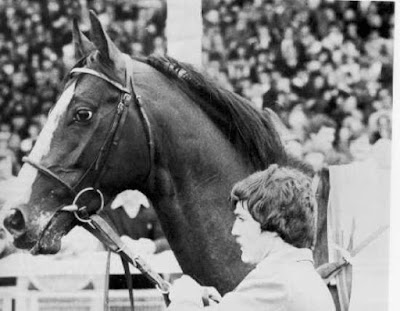 Shergar trained by Sir Michael Stoute