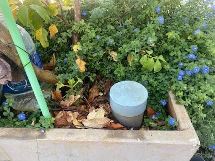 Ống nhựa tạo phân hữu cơ sau khi chôn vào bồn cây