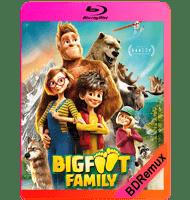 LA FAMILIA PIE GRANDE (2020) BDREMUX 1080P MKV ESPAÑOL LATINO