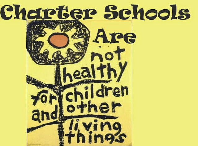 Image result for Charter Schools Pose Risk to Education Department Goals