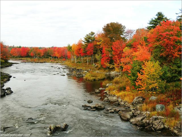 Paisaje de Maine durante el Puente por Columbus Day