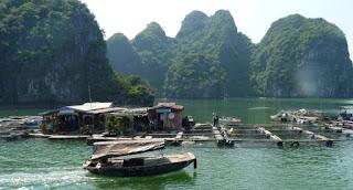 Isla de Cat Ba. Bahía de Lan Ha, pueblo pesquero de Cai Beo.