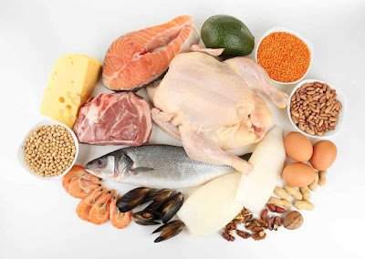 Protein diet.Reviews about the protein diet