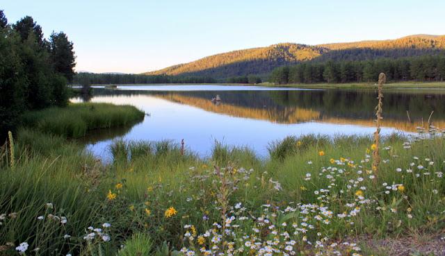 monte verde lake