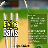 Play Flying Bails Cricket Game