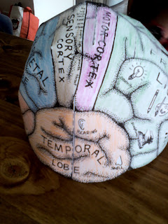 brain hat template - my red crayon put your thinking caps on
