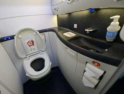 Passenger jet is grounded after foetus is found blocking the toilet ahead of take-off in South Africa