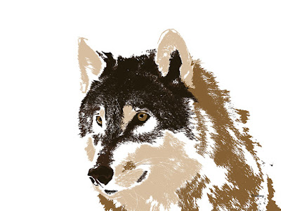 Animal Animals Wolf Wolves Print Prints