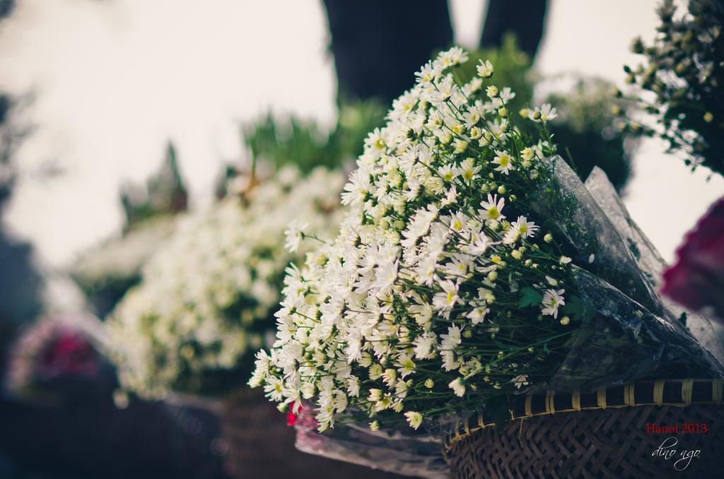 Kinh doanh hoa tươi dịp tết có lãi nhiều không
