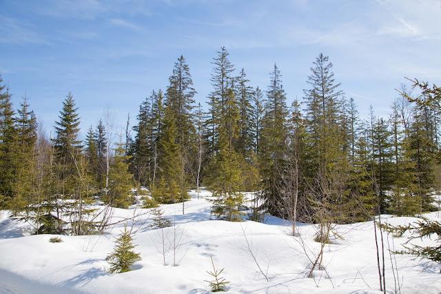 outdoor-blog wanderblog - schneeschuhe