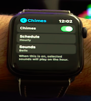 Apple Watch Series 5 Best Tips and Tricks - Image 36