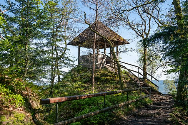 Premiumwanderweg Murgleiter | Etappe 1 von Gaggenau nach Gernsbach | Wandern nördlicher Schwarzwald 01