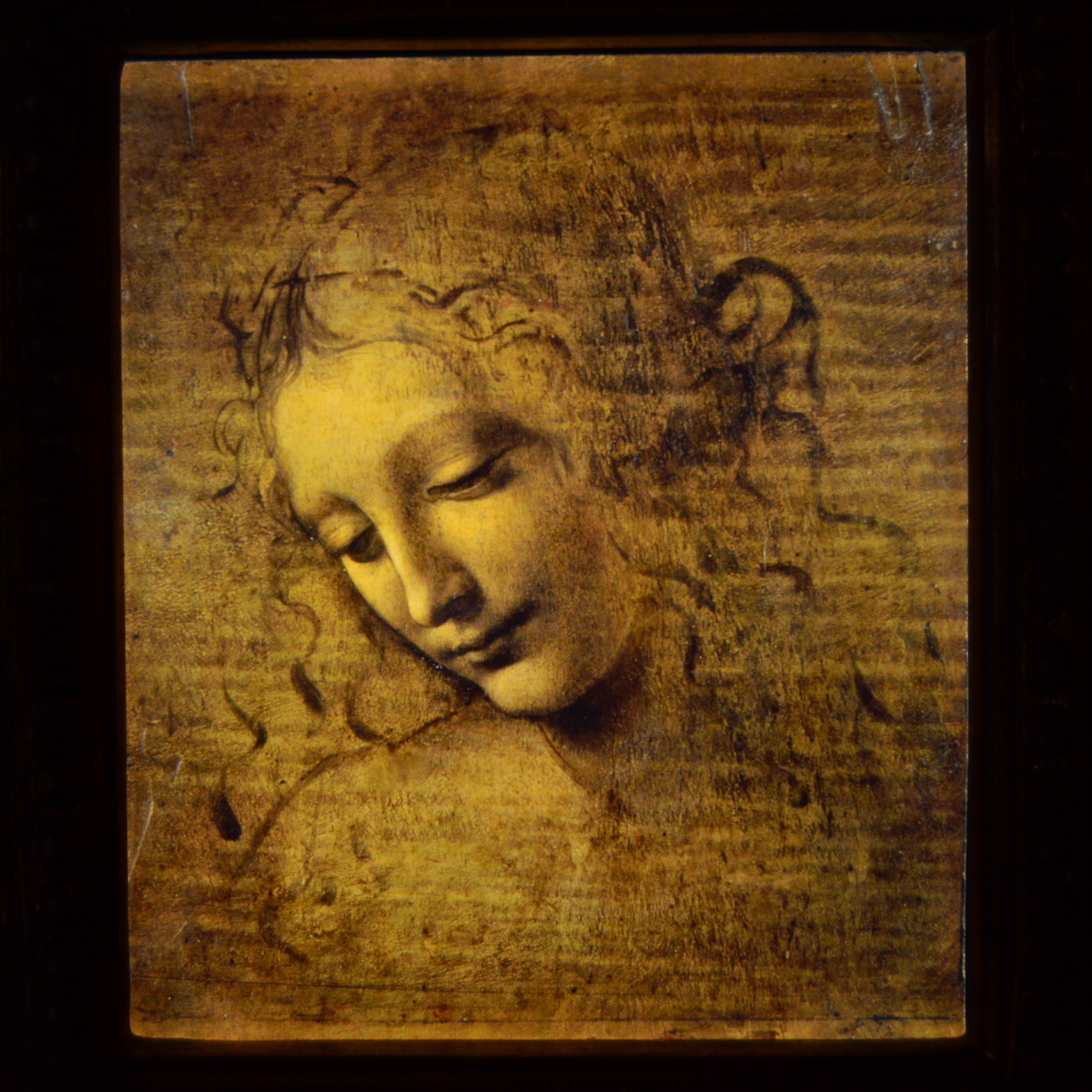 La Scapigliata - Léonard de Vinci