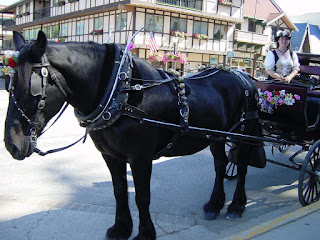 Leavenworth, a lady wearing a dirndl drives a cart pulled by a Percheron