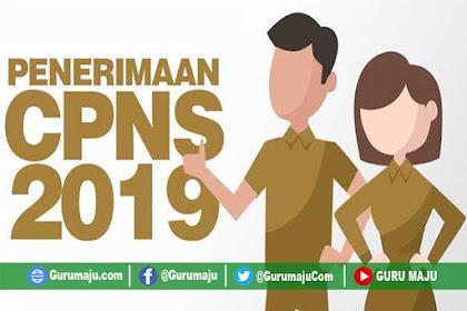 Daftar Lengkap Formasi CPNS 2019 Kemeterian, Lembaga, Provinsi dan Pemda Seluruh Indonesia