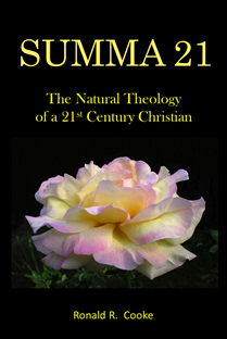 A Christian Theology for the 21st Century.