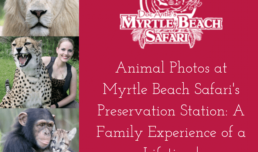 Animal Photos at Myrtle Beach Safari's Preservation Station: A Family Experience of a Lifetime!