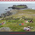 Lighthouse Picnics - Ferryland, Newfoundland