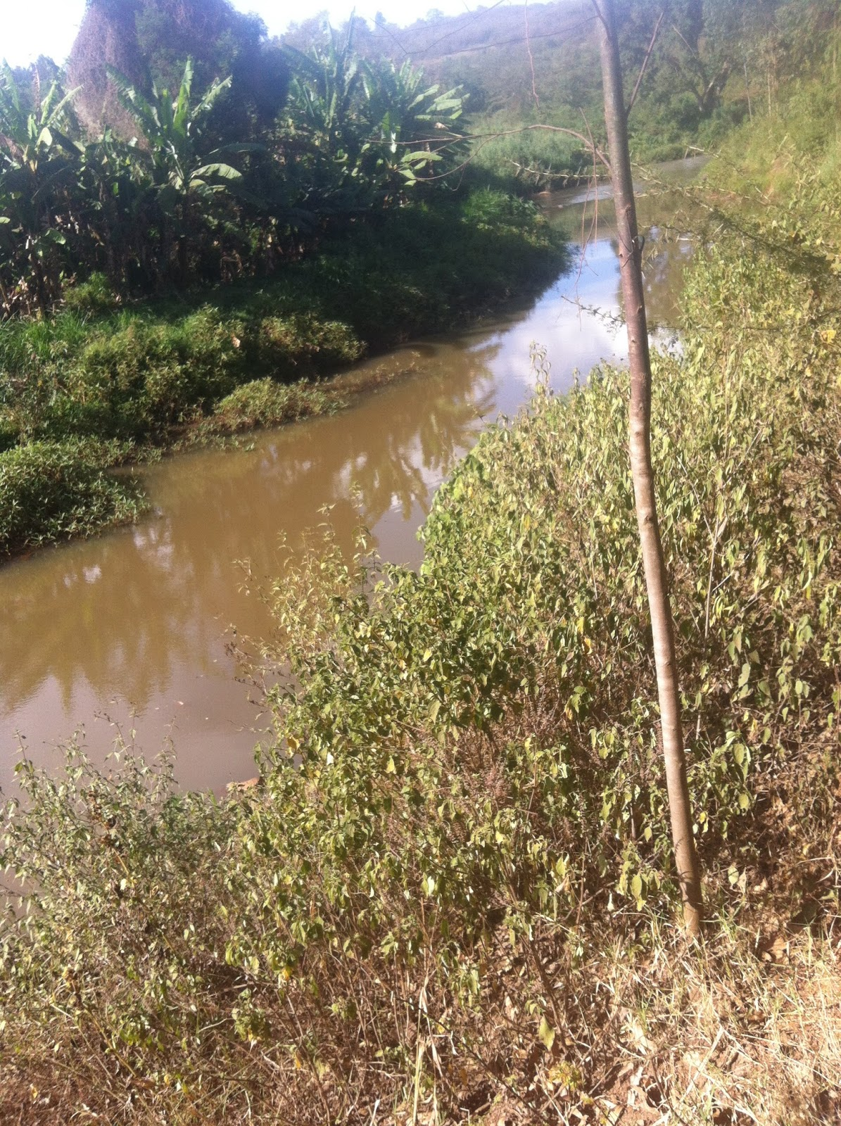 The Waters Of River Chania As Witnessed By Our Crew On Scene Oil Leak