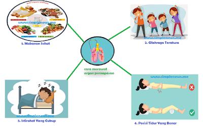 poster tentang cara merawat organ pernapasan www.simplenews.me