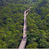 Novo parque ecológico será inaugurado em São Bernardo do Campo