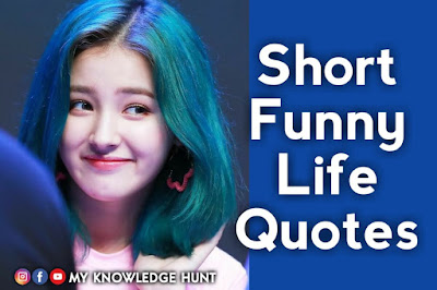 Short Funny Quotes About Life, funny life quotes