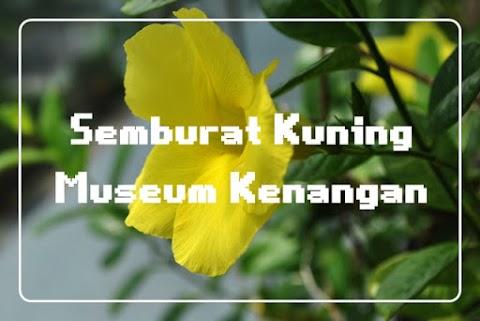 Semburat Kuning Museum Kenangan