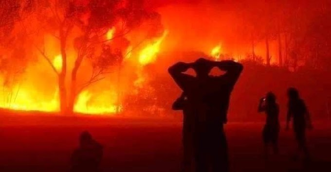Mueren 25 soldados del Ejército argelino mientras luchaban contra los incendios que azotan al país.