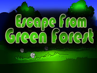 Top10NewGames - Top10 Escape From Green Forest