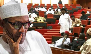 Image result for Pro-Buhari lawmakers rally against impeachment plot