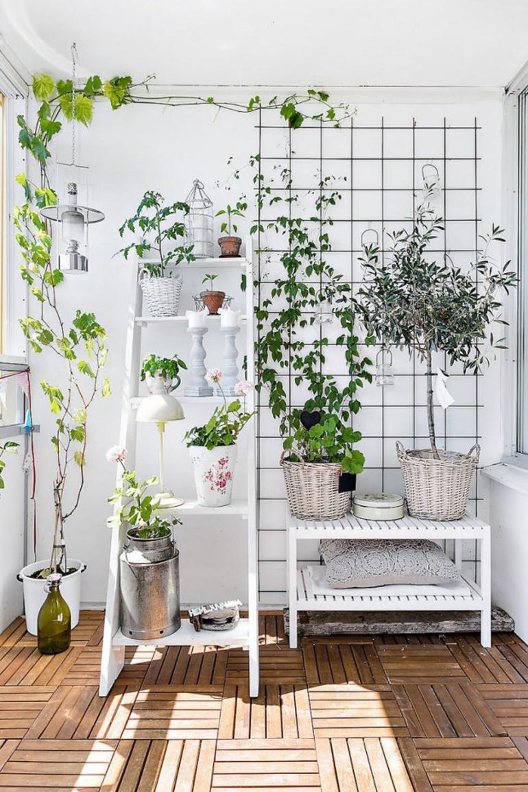terraza lowcost plantas