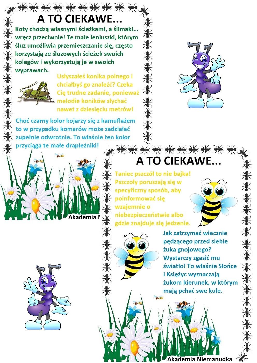 ciekawostki dla dzieci, dziecko pyta, fakty o robakach, informacje o owadach