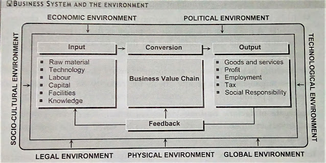 Business system and the environment