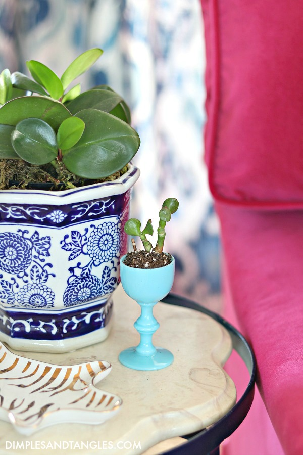 blue opaline glass, cordial glass, succulent planter