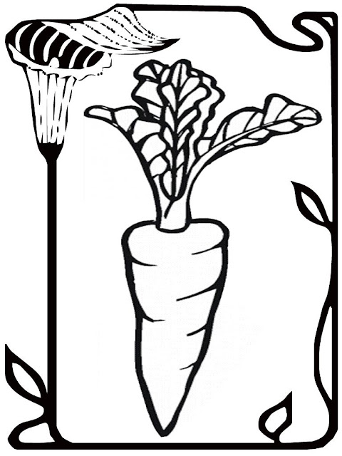 carrot seed coloring pages