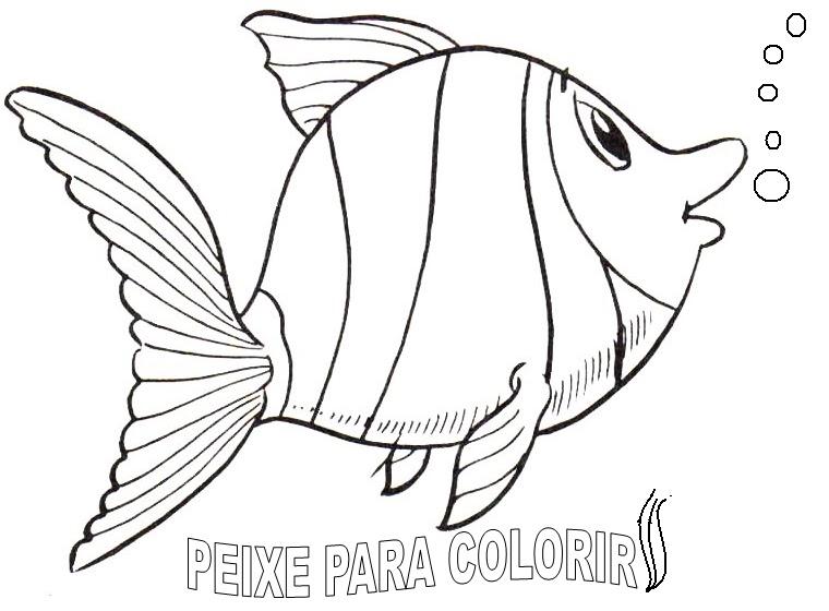 10 Desenhos Para Colorir Peixes Grandes Melhores Casas De Todas