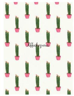 https://tictail.com/s/affichezvousavecnous/cactus
