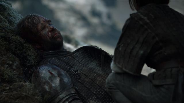 Ser Sandor Clegane The Hound