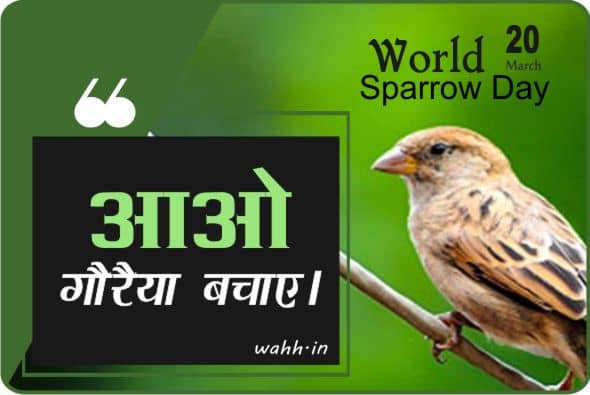 World Sparrow Day Quotes  In Hindi With Images
