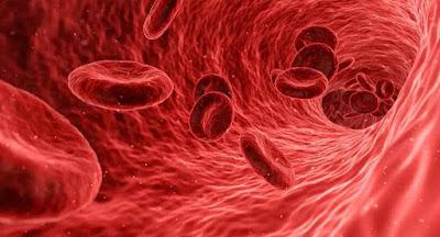 Coagulos-de-sangue